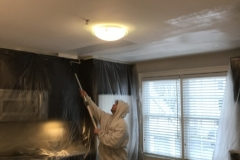 kitchen-ceiling-painting-framingham-ma-1